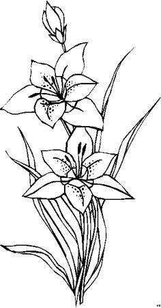 Blumengemischt_HFB-0417 (352x672, 8Kb)