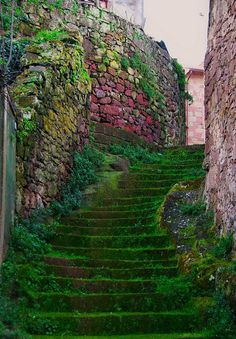 Italy Italia Scala verde…Busachi (Sardinia, Italy) by Places To Travel, Places To See, Places Around The World, Around The Worlds, Stairway To Heaven, Belle Photo, Italy Travel, Italy Vacation, Wonders Of The World