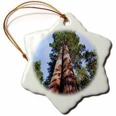 3dRose Woman, Sequoia Tree, Yosemite, California, USA - US05 MWI0013 - Mark Williford, Snowflake Ornament, Porcelain, 3-inch