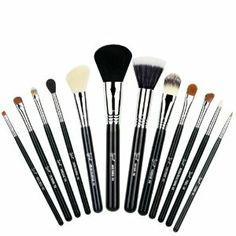 Amazon.com: Sigma Essential Kit: Beauty