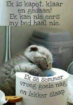 Evening Greetings, Goeie Nag, Good Night Messages, Morning Greetings Quotes, Good Night Sweet Dreams, Afrikaans, Good Morning Good Night, Sleep Tight, Day Wishes