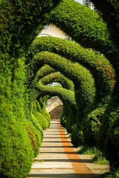 Garden Paths, Garden Art, Garden Landscaping, Garden Tips, Landscaping Ideas, Herb Garden, Formal Gardens, Outdoor Gardens, Modern Gardens
