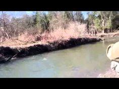 바카라사이트주소 W O W 7 7 8 C ㅇ M 바카라사이트주소 동영상