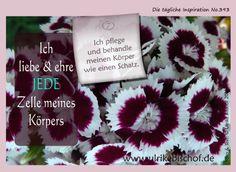 Die tägliche Inspiration No.393 www.inspirationenblog.wordpress.com www.ulrikebischof.de