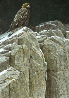 Robert Bateman (1930 –Present), Upon The Crag- Golden Eagle, acrylic on board, 36 x 26 in, JHAA 2007 Sold: $43,125