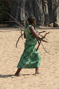 Collecting wood . likoma island . Mozambique