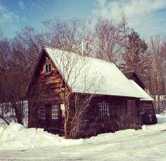 I want to live in a log cabin one day when I'm old <3