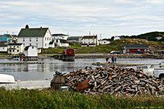 A photo of Twillingate, Newfoundland # Newfoundland Atlantic Canada, My Heritage, Heaven On Earth, Newfoundland, Canada Travel, Labrador, Road Trip, To Go, Mansions