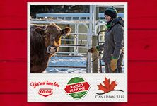 Your local Co-op is proud to support local ranchers. Meet three ranch families from Western Canada in Raised at Home, a three-part series from Co-op and Canada Beef. See how Co-op works with producers to bring quality Western Canadian beef to your table. www.raisedathome.ca/ - Manitoba Western Canada, Support Local, Westerns, Ranch, Families, Bring It On, Meet, Baseball Cards, Table