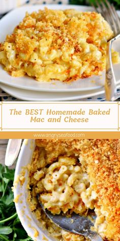 The BEST Homemade Baked Mac and CheeseYou can find Best mac and cheese recipe and more on our website.The BEST Homemade Baked Mac and Cheese Best Ever Mac And Cheese Recipe, Homemade Mac And Cheese Recipe Baked, Macaroni Cheese Recipes, Bake Mac And Cheese, Baked Macaroni, Cheesy Recipes, Mac And Cheese Casserole, Mac And Cheese Recipe With Bread Crumbs, Tutorials