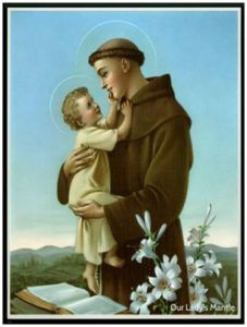 13 de Junio Fiesta de San Antonio de Padua.Reciban todos de él sus Bendiciones.