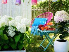 A garden display of Hydrangea Hydrangea Garden, Hydrangeas, Outdoor Furniture Sets, Outdoor Decor, Garden Plants, Bunt, Gardening Tips, Baby Strollers, House Design