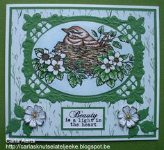 Beccy's Place - Feathered Nest Clear Stamp Set