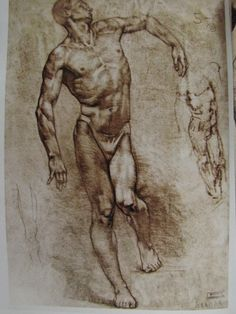 Gottfried-Bammes-The-Artist-s-Guide-to-Human-Anatomy - Google Search