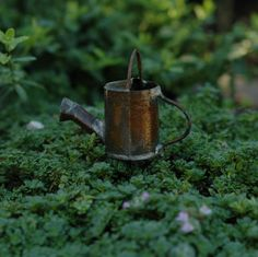 Fairy Homes and Gardens - miniature watering can, $3.99 (https://www.fairyhomesandgardens.com/miniature-watering-can/)