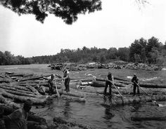 old maine loggers | photo of a logdrive in Limington in 1937