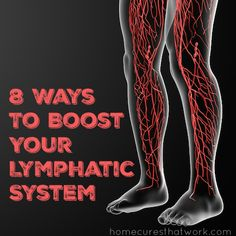 1000 Images About Supporting The Lymphatic System On