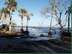 Hunting Island Sc Camping Reservations