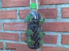 estufa com garrafa pet em vaso - Pesquisa Google