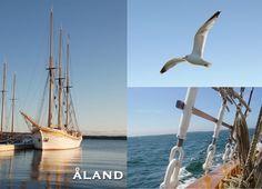 . Sailing Ships, Boat, Vehicles, Boats, Car, Vehicle, Tools