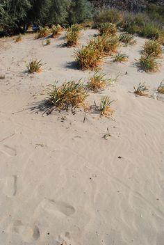 Limnos island greece, smouth sand everywhere