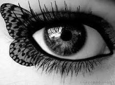 Boa noite pessoas livres de rancores, mágoas e com asas perfeitas para voar... *** E que o seu olhar seja livre enquanto dure...Que a liberdade que o faz sobrevoar lugares incríveis possa somente enxergar o que agregar, somar, iluminar, porque boas escolhas são matizes especiais da vida e pode ter certeza, fazem toda diferença...   ***  figura reproduzida