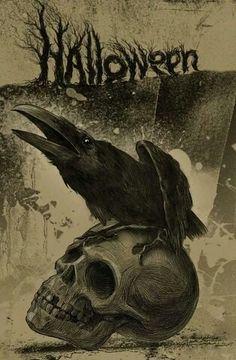 Cool crow drawing