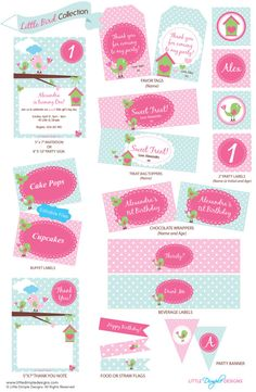 Pink Baby Bird Birthday Party Printable by LittleDimpleDesigns, $60.00