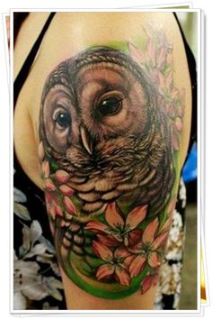 tatuagem de coruja 6