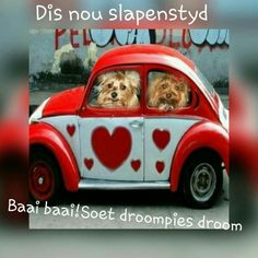 Nagsê Good Night Wishes, Good Night Quotes, Happy Birthday Wishes Cake, Afrikaanse Quotes, Goeie Nag, Goeie More, Morning Pictures, Morning Pics, Special Quotes