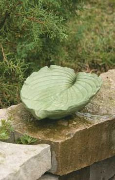 Leaf Birdbath  You don't have to pay a lot for a one-of-a-kind birdbath. This spring, look for plants with large leaves to add to your garden. Then turn one of those big beauties into a birdbath.