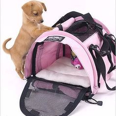 The Small Cube SturdiBag™ is our smallest and lightest pet carrier. Designed specifically for very small pets, kittens and puppies up to pounds. All SturdiBags have our patented, award winning fle Airline Approved Pet Carrier, Airline Pet Carrier, Dog Carrier, Kittens And Puppies, Cute Puppies, Small Puppies, Yorkshire Macho, Pet Dogs, Dog Cat