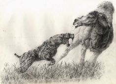 """Smilodon attacking American camel"" and ""Homotherium chasing off a dire wolf"" by Steve White"