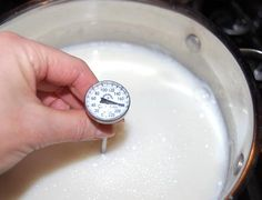 """trying this homemade greek yogurt recipe today (minus the """"greek"""" part since I don't have cheesecloth. next time) Make Greek Yogurt, Make Your Own Yogurt, Homemade Greek Yogurt, Greek Style Yogurt, Nonfat Greek Yogurt, Greek Yogurt Recipes, Food To Make, My Recipes, Real Food Recipes"""