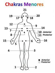 Recordemos, los chakras o centros secundarios también son sitios de conjunción o de cruce de los nadis, que llevan la energía del prana, energía de distintas frecuencias y vibraciones, para nutrir …