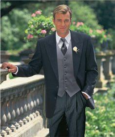Grey Tuxedo Name Lexington Stroller