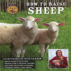 How to Raise Sheepy.....I wonder if it offers tips on house training, leash training, and how to keep them off the furniture. I hope so!