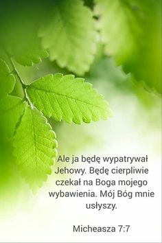 Motto, Plant Leaves, Plants, Bible, Plant, Mottos, Planets