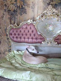 Design im Rokoko Stil – Reminiszenz an die prachtvollsten Kunstepochen - Decor Marie Antoinette, Paper Mulberry, Boudoir, Sweet Home, Rococo Style, Romantic Homes, Upholstered Beds, French Decor, Old World