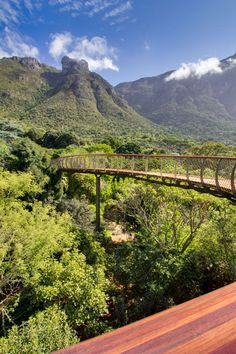 Boomslang Walkway Kirstenbosch Arboretum Cape Town, South Africa Mark Thomas and Henry Fagan photo © Adam Harrower Mark Thomas, The Places Youll Go, Places To See, South Afrika, Namibia, Le Cap, Cape Town South Africa, Africa Travel, Botanical Gardens