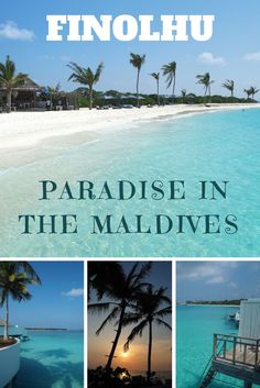 Located in the Baa Atoll in the Maldives, Finolhu is as close to paradise as you can get!