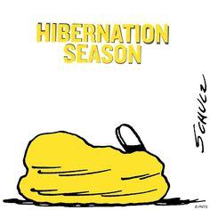 Hibernation Season