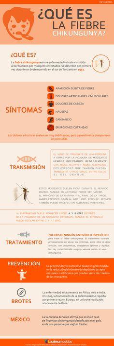 ¿Qué es la fiebre Chikungunya?