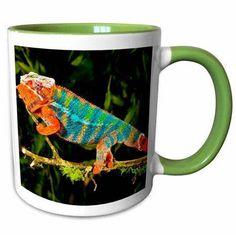 East Urban Home Elisa Rainbow Panther Chameleon, Lizard in Madagascar Coffee Mug Coffee Mug Sets, Mugs Set, Chameleon Lizard, Dragon Glass, Custom Printed Mugs, Espresso Cups Set, Red Blue Green, Cup And Saucer Set, China Porcelain