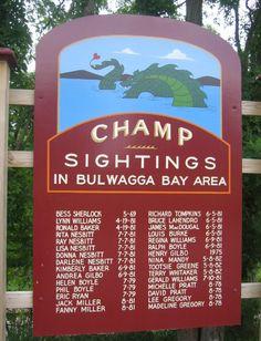 "Lake Champlain ""Champy"" sightings, Willsboro, NY - saw this last summer!"