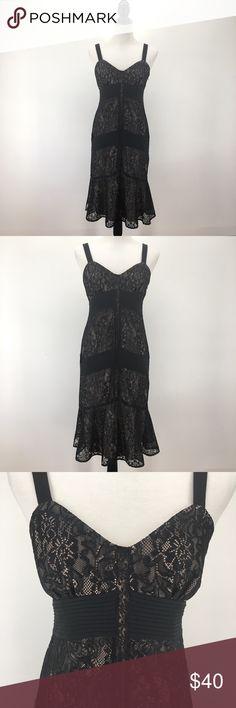 "Ann Taylor LOFT Petite Lace Dress NWT! Elegant new Ann Taylor LOFT lace dress with nude lining. Gorgeous satin details. Excellent condition!  * Invisible side zip * Fully lined * 100% Polyester * Size 6P * Bust 35"" * Waist 27"" * Hip 36.5"" * Length, 39""  List $40 MSRP $129 LOFT Dresses"