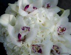 James Walton Photography- White Cymbidium Orchid and Hydrangea Bouquet