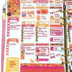 These acorn checklists are just the cutest from @plan_with_monica !!  Shops tagged. #wlecmidweek #planner #planning #plannergirl #planneraddict #plannerlove #plannerlife #plannernerd #plannercommunity #plannerobsessed #plannersgonnaplan #ErinCondren #ECLP #weloveec #wlecp #stickers #stickeraddict #plannerstickers #kikkik #washi #washitape #washiaddict #plannergoodies by lexie_plans