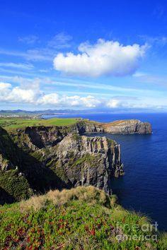 ✮ Coastal landscape of the area of Ponta do Cintrao - Sao Miguel island, Azores, Portugal