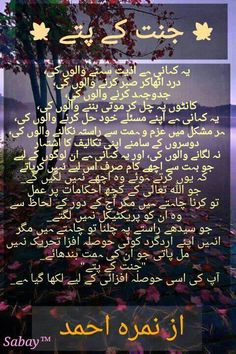 jannat kay pattey............<3 the story of those who protected thier warq al jannah.....<3